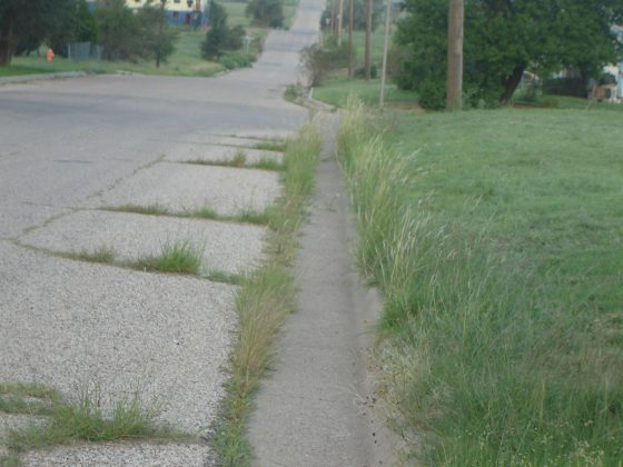North Amarillo Now Amarillo S Street Weeds Is There A Solution